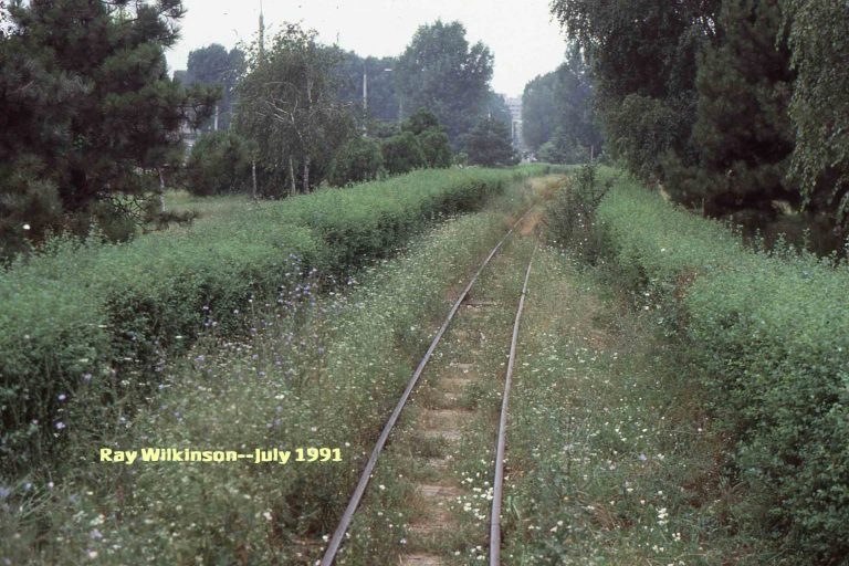 Part-of-the-overgrown-track-768x512.jpg