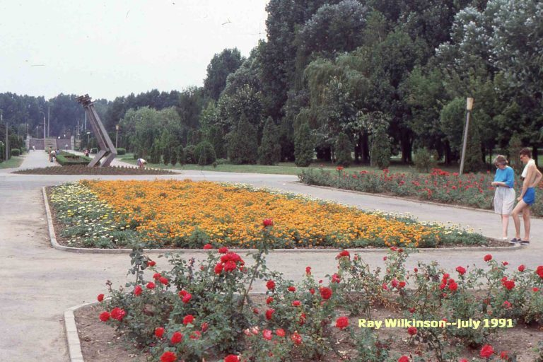 Flower-beds-in-the-park-768x512.jpg